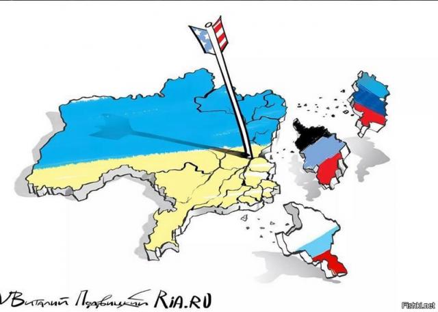 Выборы на Донбассе должны пройти по украинским законам, - Тальявини - Цензор.НЕТ 4023