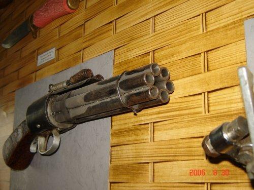 Револьверообразные (вернее