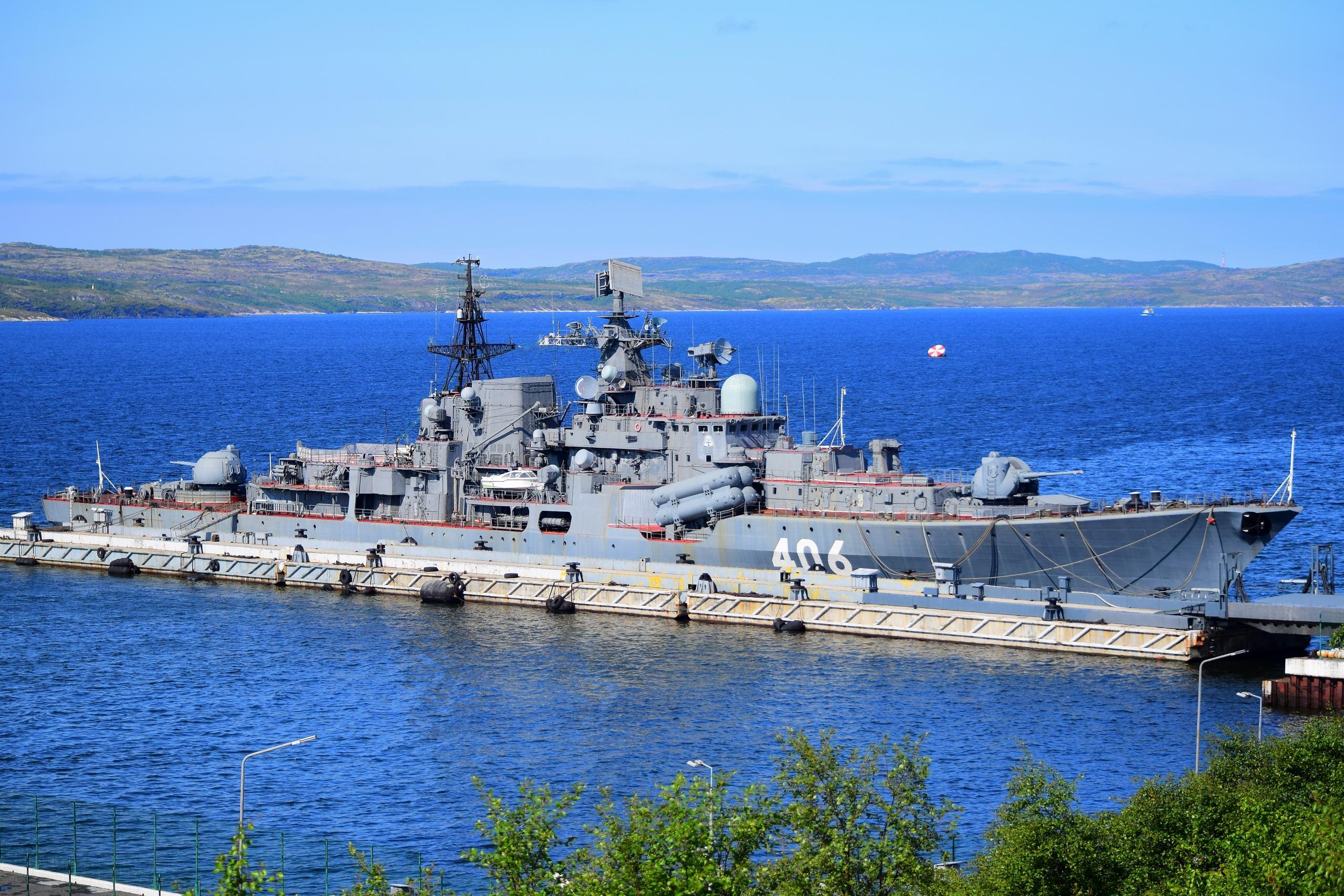 фото эсминца стойкий чихуахуа обожают проводить
