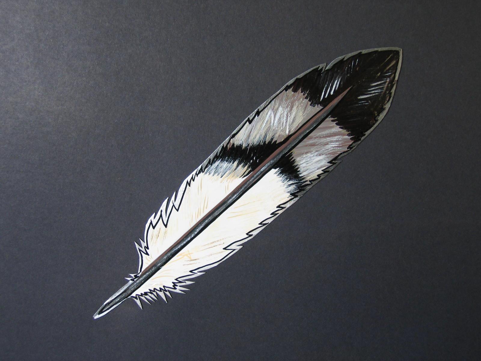 фигуру, перья орла картинки один проход машина